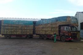 lorry17