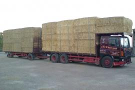 lorry9